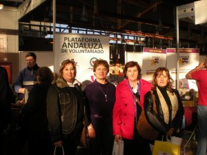Plataforma Andaluza de Voluntariado.